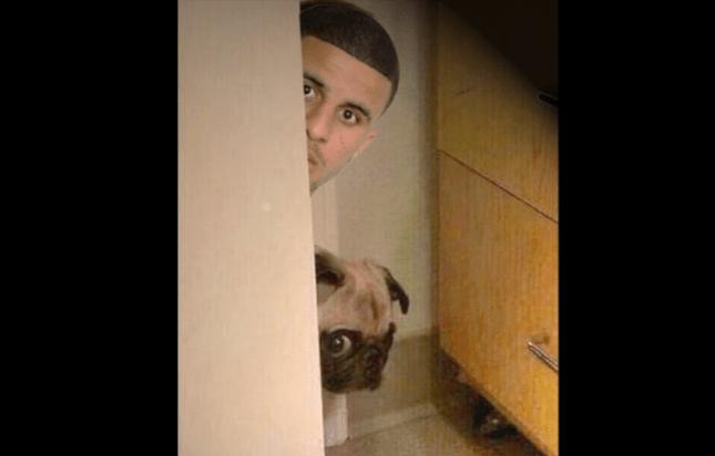 Кайл уокер видео с собакой смотреть